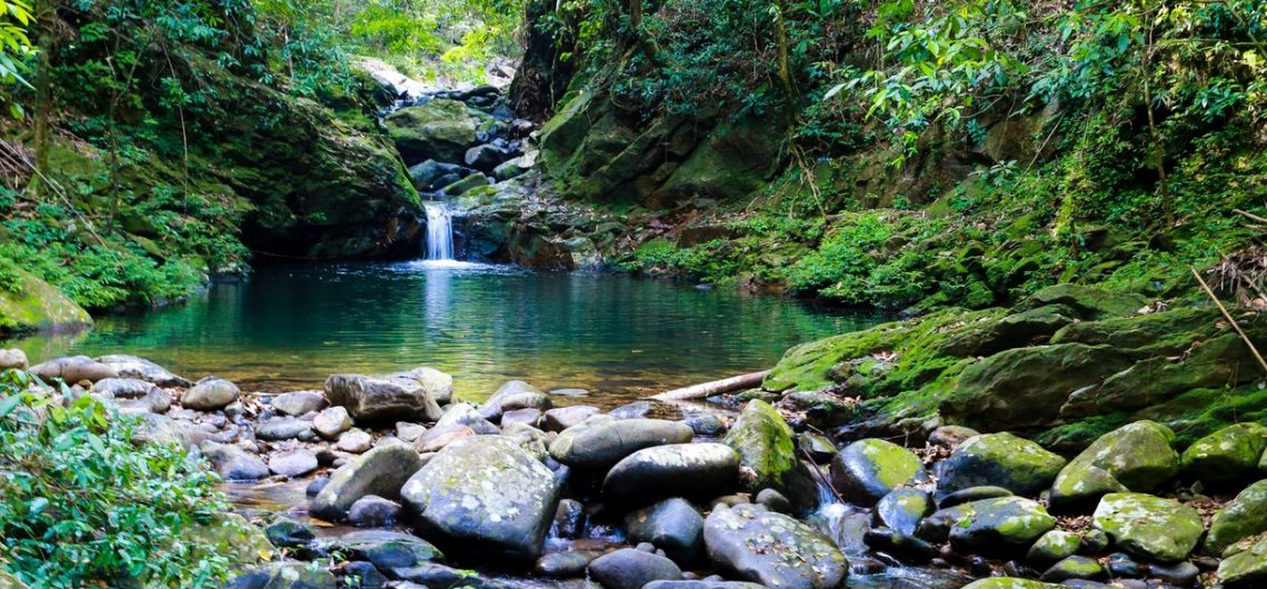 Bach Ma National Park - Danang Travel, Danang Blog, Danang Private car